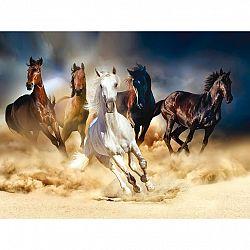 Fototapeta XXL Horses 360 x 270 cm, 4 diely