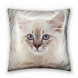 Halantex Vankúšik Animals Cat grey, 40 x 40 cm